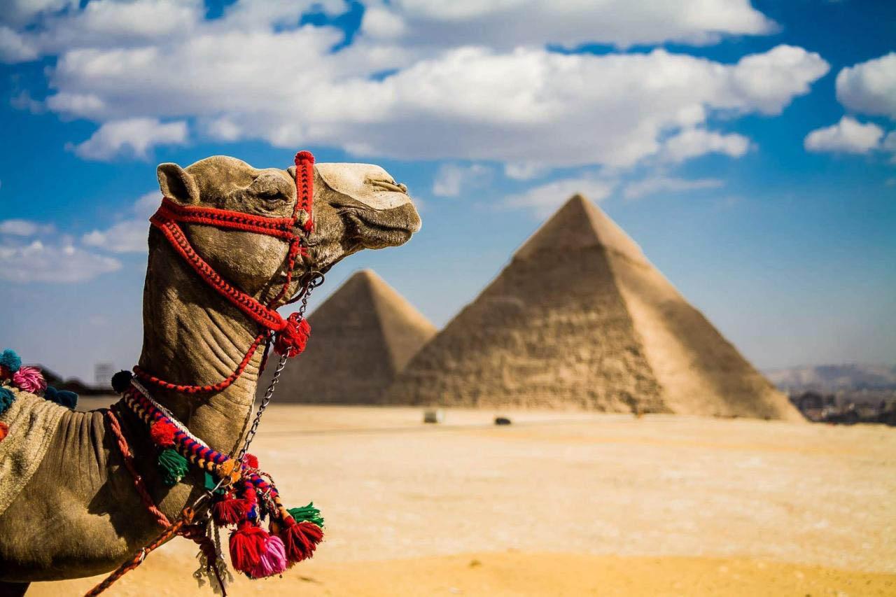 Таинственный и жаркий Египет