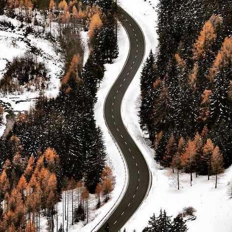 Зима в Владимиро - Суздальских лесах
