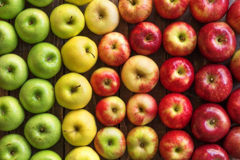 Яблоки и их полезные свойства для организма человека