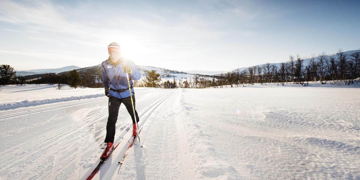 Зимнее лето или лыжи – что кому по душе