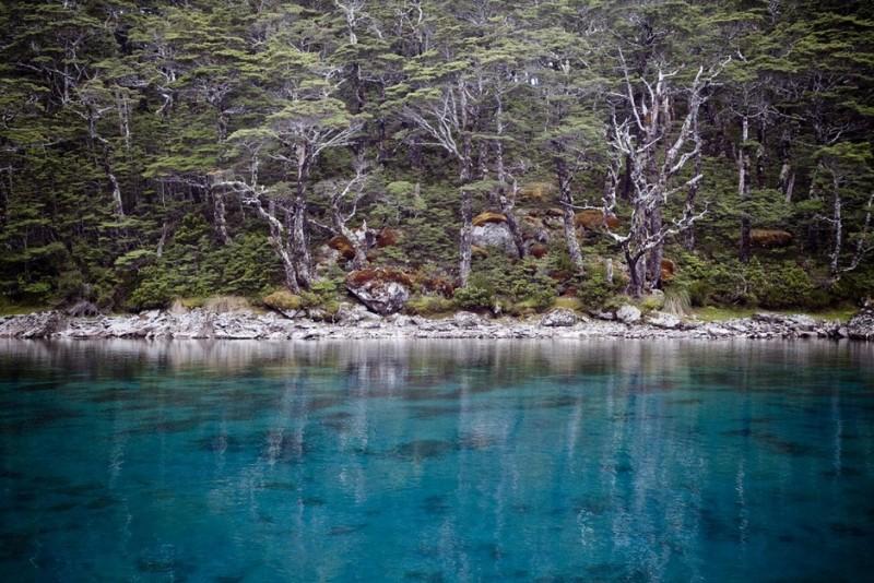 Парк озер Нельсон. Экстремально прозрачное Синее озеро