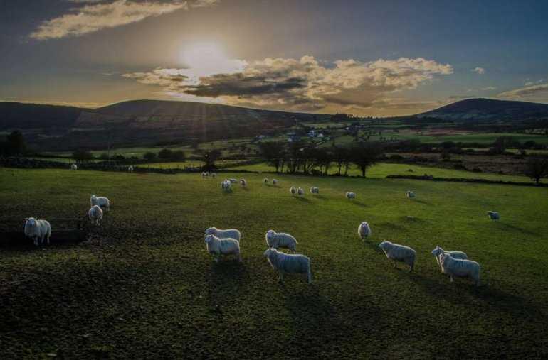 8 достопримечательностей северной Ирландии, которые должен увидеть каждый
