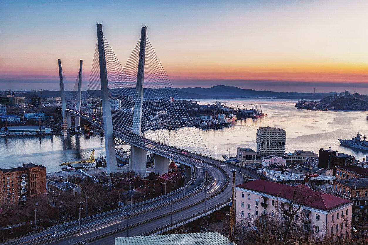 Во Владивостоке решили с пользой использовать утилизированные новогодние елки