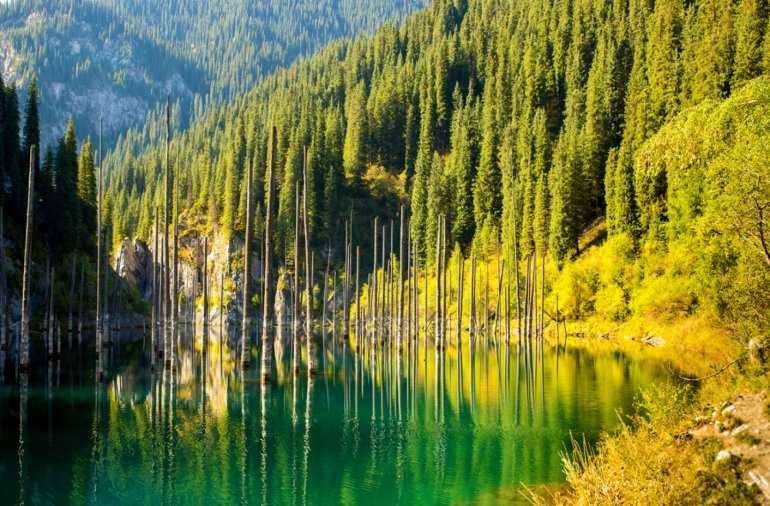 Загадки озера Каинды — сокровища Тяньшаньских гор