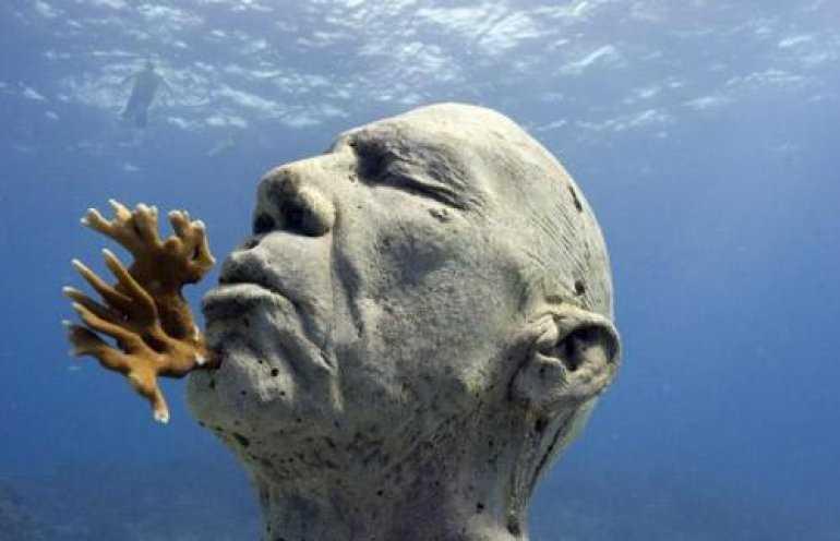 Подводный музей: Самый мокрый музей мира