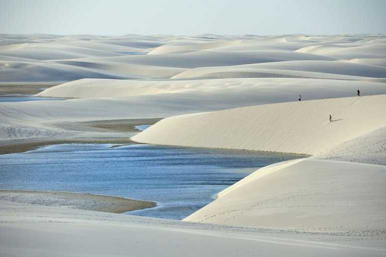 Водится ли рыба, в Бразильской пустыне Ленсойс-Мараньенсис?