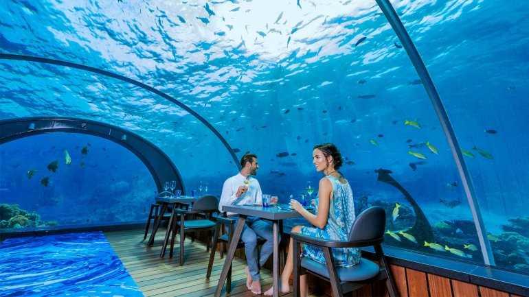 Что ожидать от обеда в подводном ресторане?