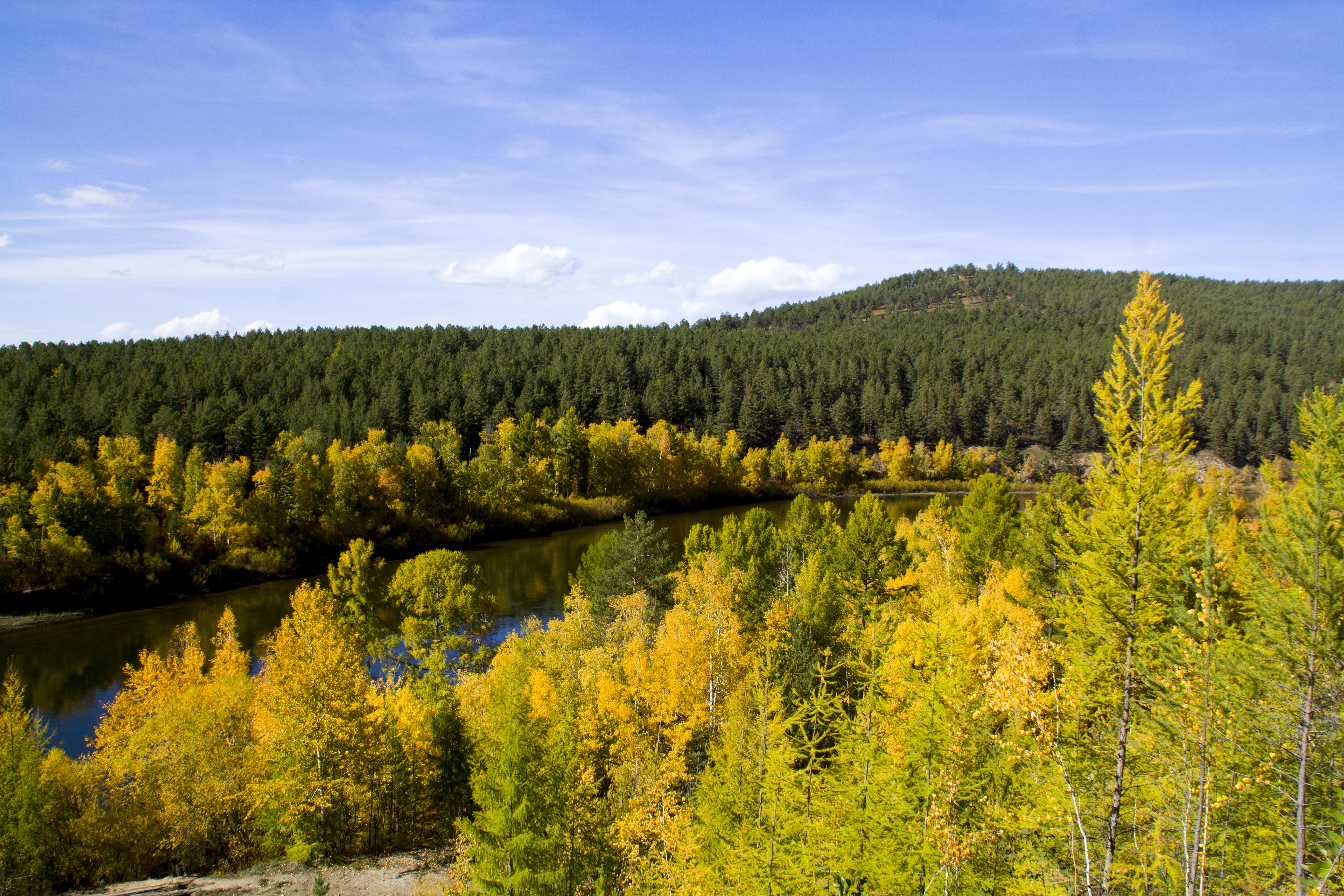 Осень в золоте листвы