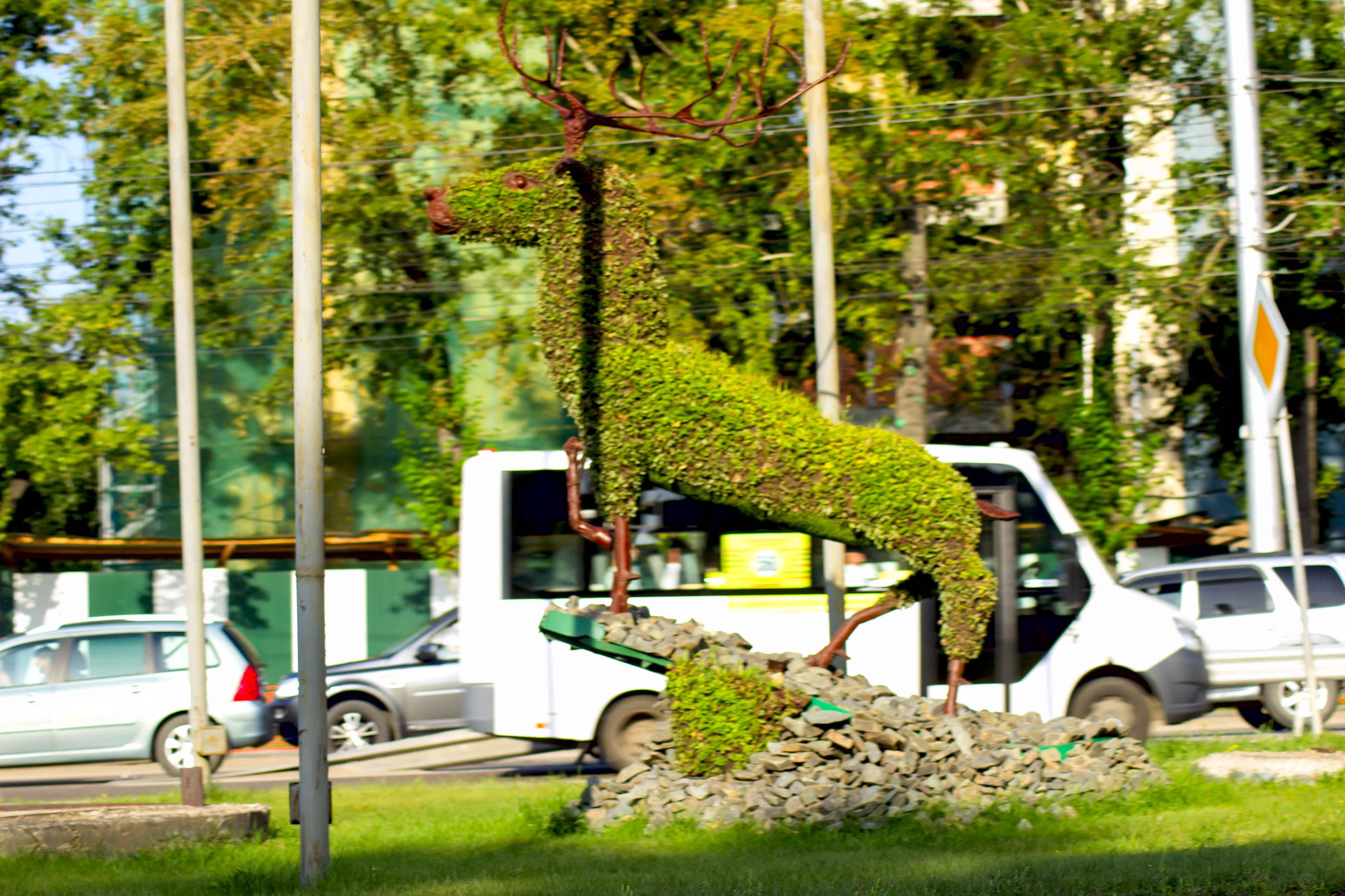 Зелёный олень. Иркутск
